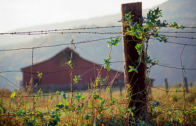 Barn with wire fence on hill