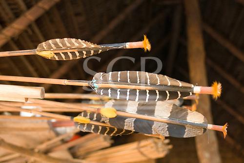 Pará State, Brazil. Aldeia Ipixuna (Araweté). Arrows with mutum feather flights.