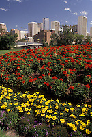 AJ3621, Calgary, skyline, Alberta, Canada, Red and yellow flowers adorn a city park with the skyline of Calgary in the distance in the province of Alberta.