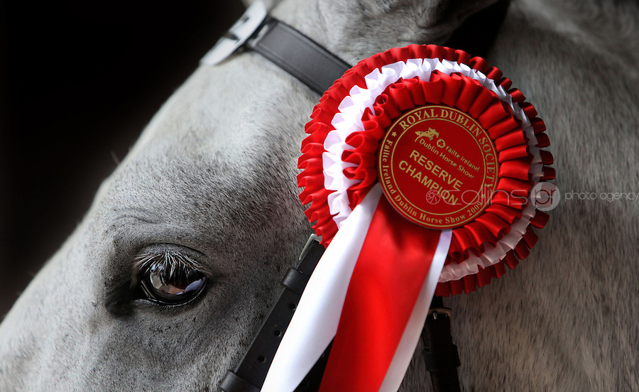 07/08/2009.General scenes at the Failte Ireland Dublin Horse Show at the RDS, Dublin..Photo: Gareth Chaney Collins