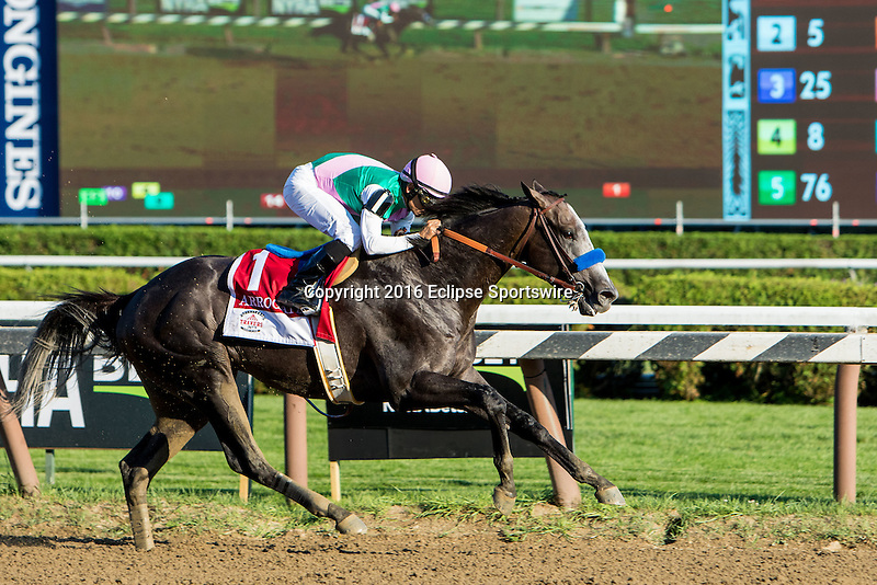 SARATOGA SPRINGS - AUGUST 27: Arrogate #1, ridden by Mike Smith, wins the Travers Stakes on Travers Stakes Day at Saratoga Race Course on August 27, 2016 in Saratoga Springs, New York. (Photo by Sue Kawczynski/Eclipse Sportswire/Getty Images)