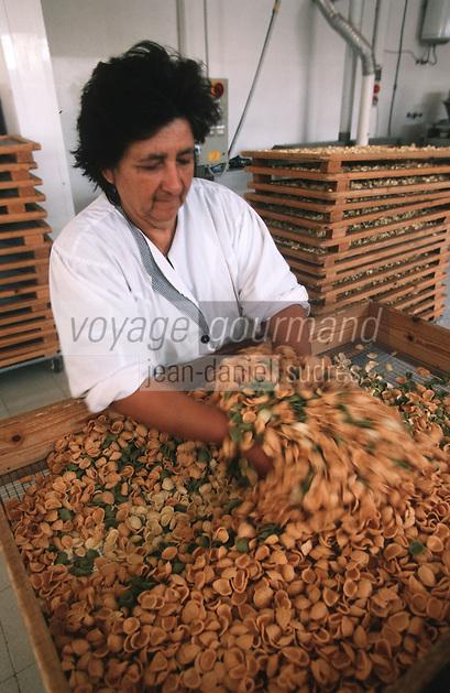 Europe/Italie/La Pouille/Alberobello: Fabrication des pates Orecchiettes a l'azienda agricola dei trulli
