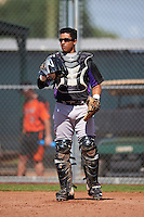 Colorado Rockies Javier Guevara (82) during an Instructional League game against the San Francisco Giants on October 8, 2016 at the Giants Baseball Complex in Scottsdale, Arizona.  (Mike Janes/Four Seam Images)
