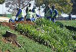 FUDBAL, JOHANEZBURG, 08. Jun. 2010. - Radnici zavrsavaju poslednje pripreme u Johanezburgu pred pocetak SP 2010. U Juznoj Africi se od 11. juna do 11. jula odigrava Svetsko prvenstvo u fudbalu. Foto: Nenad Negovanovic
