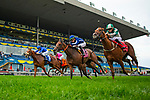 TORONT,CANADA-SEP 15: Abscond,ridden by Irad Ortiz jr,wins the Natalma Stakes at Woodbine Race Track on September 15,2019 in Toronto,Ontario,Canada. Kaz Ishida/Eclipse Sportswire/CSM