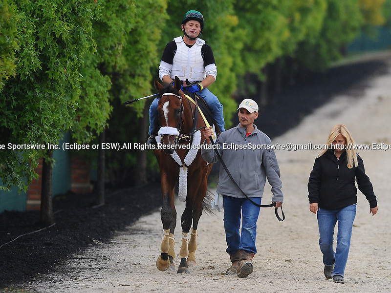 Mucho Macho Man, trained by Kathy Ritvo, prepares for the 136th running of the Preakness Stakes to be run May 21, 2011.