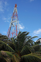 Radio tower sticking out of a grove of palm trees, Maldives.