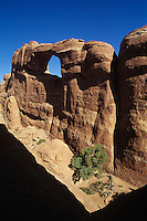 Partition Arch-Arches National Park, Utah