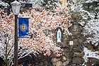 January 4, 2020; Grotto during a snowfall (Photo by Matt Cashore/University of Notre Dame)
