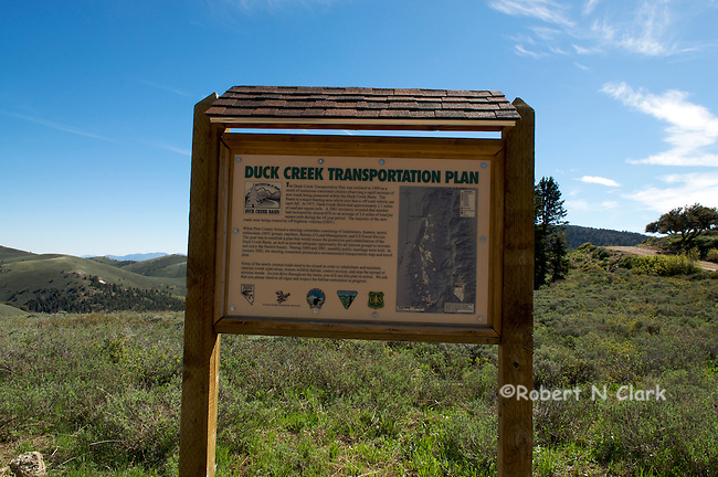 Upper Duck Creek area near Ely, Nevada