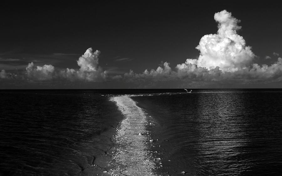 Morning on Comer Key at higher tides photographed using infrared Canon 5D Mark II camera in Florida's Everglades National Park out of Chokoloskee Island and the 10,000 Islands National Wildlife Refuge. Photo/Andrew Shurtleff