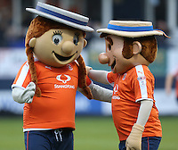 Luton Town mascots ahead of the Sky Bet League 2 match between Luton Town and Barnet at Kenilworth Road, Luton, England on 31 December 2016. Photo by David Horn.
