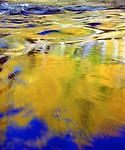USA, California, Sierra Nevada Mountains, Sierra Autumn Forest Reflection