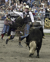 "29 Aug 2004: PRCA Rodeo Bull Rider Steven Woolsey riding the bull ""Little Man"" during the PRCA 2004 Extreme Bulls competition in Bremerton, WA."