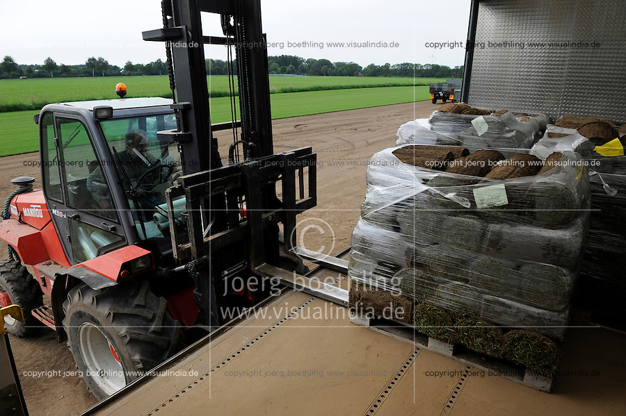 DEUTSCHLAND, Matthies Landwirtschaft in Wenzendorf, Anbau, Ernte und Verladung von Rollrasen fuer Gaerten, Stadien, Sportstaetten, Parks etc. / <br /> GERMANY cultivation of rolling lawn at Matthies Agriculture in Wenzendorf, lower saxonia