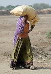 Pakistani woman carries her crop in Mirpurkhas, Sindh. This area has long been plagued by huge landowners forcing poor families into slavery.