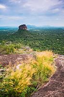 Sigiriya Rock landscape seen from Pidurangala Rock, Sri Lanka, Asia. This is a landscape photo of Sigiriya Rock, seen from Pidurangala Rock, Sri Lanka, Asia. Pidurangala Rock offers incredible views over typical Sri Lanka jungle landscape and plains.