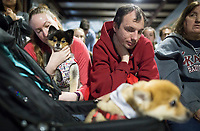 NWA Democrat-Gazette/CHARLIE KAIJO Nikita Mahurin (left) holds Rally, a Pomeranian/husky mix, also pictured with Daniel Jones (right) of Rogers, during a dog show, Saturday, April 21, 2018 at the Rogers Farmer's Market in Rogers.<br />