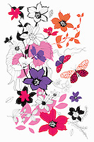 Drawing of flowers, leaves and butterflies