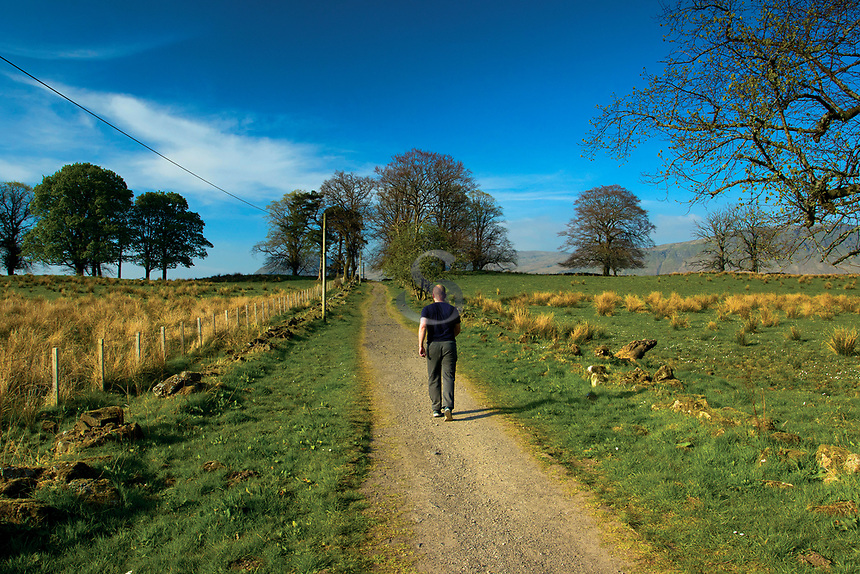 A walker on the West Highland Way, near Easter Carbeth, Blanefield, Stirlingshire