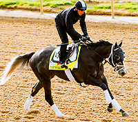 LOUISVILLE,KNY - MAY 03: Taprit, Morning works for Kentucky Derby & Kentucky Oaks at Churchill Downs, Louisville, Kentucky. (Photo by Sue Kawczynski/Eclipse Sportswire/Getty Images)