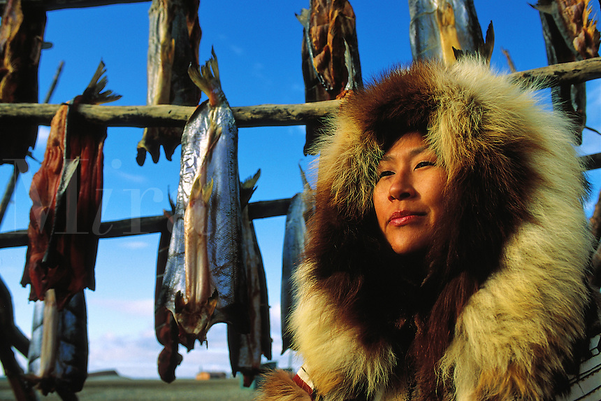 A Native Alaskan Inupiat woman drying salmon in a heavy fur coat. Alaska.