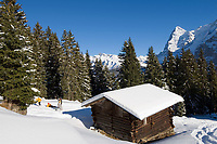CHE, Schweiz, Kanton Bern, Berner Oberland, Muerren: Almhuette, Skipiste und Eiger (3.970 m) | CHE, Switzerland, Canton Bern, Bernese Oberland, Muerren: ski area, hut and Eiger (3.970 m) mountain with Eiger North Face