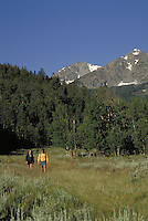 Man and woman hiking in the scenic backcountry of Eagles Nest Wilderness Area in the Colorado Rocky Mountains. Steve Holmes (MR 496), Holly Isaccson (MR 431). Colorado.