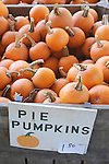 Vegetable stand.Pie pumpkins