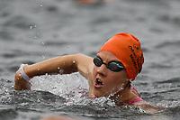 Schimmer der 1. Startergruppe im Wasser - Mörfelden-Walldorf 16.07.2017: 9. MöWathlon