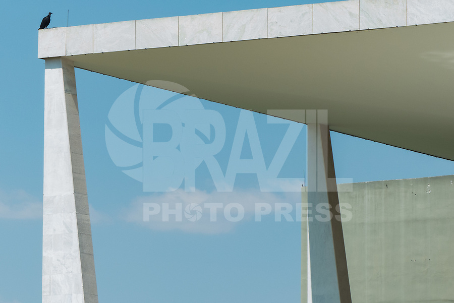 BRASILIA, DF, 02.10.2015 - URUBU/PLANALTO -  Urubu pousado no teto do Palácio do Planalto, nesta sexta-feira, após evento de declaração da Reforma Administrativa do Governo Federal.(Foto:Ed Ferreira / Brazil Photo Press)