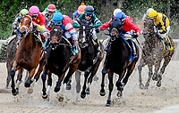 OLDSMAR, FL - MARCH 10: on Tampa Derby Day at Tampa Bay Downs on March 10, 2018 in Oldsmar, FL. (Photo by Scott Serio/Eclipse Sportswire/Getty Images)