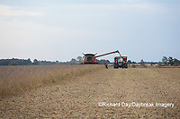 63801-07210 Soybean harvest with Case IH combine in Marion Co. IL