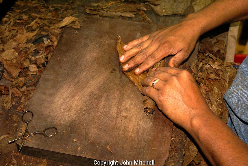 Close up of a woman's hands rolling a cigar in the Tabacalera Alberto Turrent  cigar factory  near San Andres Tuxtla , Veracruz, Mexico              .