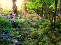 Bridge and stream. Portland Japanese Garden, Oregon