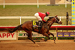 DEL MAR, CA  SEP 7: #6 Dr. Schivel, ridden by Flavien Prat, in the stretch of the Runhappy Del Mar Futurity (Grade l) on September 7, 2020, at Del Mar Thoroughbred Club in Del Mar, CA. .(Photo by Casey Phillips/Eclipse Sportswire/CSM.