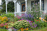 Bass Harbor, Maine: Summer cottage garden and covered porch. Flower garden features sedum 'Autumn Joy', coreopsis, rudbeckia, zinnias, dahlias, echinacea, russian sage, and lavatera