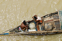 INDIA Westbengal Calcutta Kolkata, fisherman in boat on river Hooghli / INDIEN Kalkutta Kolkata, Fischer in Holzboot auf dem Hugli Fluss