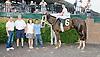 Oranges's Lis Sis winning at Delaware Park on 5/26/12