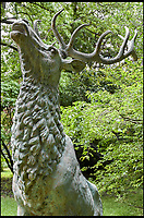 BNPS.co.uk (01202 558833)<br /> Pic: Dreweatts/BNPS<br /> <br /> A stag estimated at &pound;9,000.<br /> <br /> A remarkable collection of giant bronze animals has emerged for auction and is tipped to sell for &pound;40,000.<br /> <br /> The menagerie of exotic animals includes a 7ft tall giraffe, a 9ft long elephant and a 1,800lb stag.<br /> <br /> Also included in the collection are a lion, a cheetah, a panther, a rhinoceros, a hippopotamus, a crocodile, a deer, a wild boar, a horse and various bronze birds.<br /> <br /> They were consigned by a vendor in Berkshire who collected the bronze animals with her late husband over the course of 20 years.