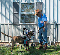 NWA Democrat-Gazette/ANTHONY REYES • @NWATONYR<br /> Richard Ellett and his dog Tiger train Friday, Sept. 25, 2015 at the SoldierON service dog training facility in Fayetteville. Ellett was the first veteran to get a service dog through the program. He says the dog helps him to remember his medicine, aids him after a fall and helps with his PTSD.