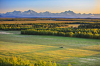 Combine harvests Barley grain in Delta Junction, Alaska Range mountains in the distance, Interior, Alaska.