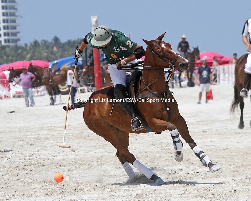 April 26, 2014:  The 10th Anniversary of the   Miami Beach Polo World Cup. Six men's and women's teams representing polo playing nations from around the world fight impressive battles in the 4 day event.  Miami Beach, FL Liz Lamont/ESW/CSM