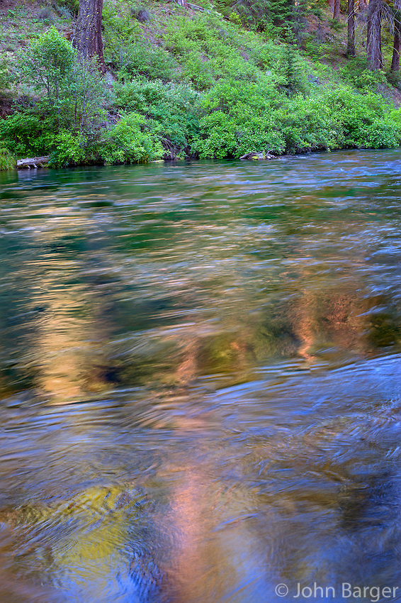 USA, Oregon, Deschutes National Forest, Fluid water and reflections along the Metolius River in evening. The Metolius River is a federally designated Wild and Scenic River.