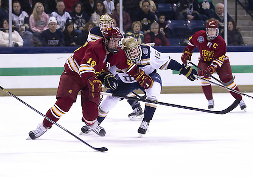 January 25, 2013:  Ferris State left wing Garrett Thompson (16) and Notre Dame right wing Peter Schneider (15) battle for the loose puck during NCAA Hockey game action between the Notre Dame Fighting Irish and the Ferris State Bulldogs at Compton Family Ice Arena in South Bend, Indiana.  Ferris State defeated Notre Dame 3-1.