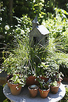 A garden table displays a variety of cacti, herbs and ornamental quince around a birdhouse in the shape of a church