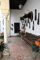 Bull's heads mounted on the wall in a shaded terrace at El Esparragal, a restored hacienda which was once a bull-raising ranch and is now a luxury ranch hotel