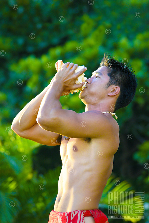 Here a Hawaiian man sounds the Conch Shell to commence the Hula performance at the Kuhio Beach Park stage under the Banyan Tree. A variety of music/chant and dance is performed at this weekly event. Located near Waikiki Beach, Oahu.