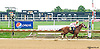 Camp Boreal winning at Delaware Park on 9/21/15