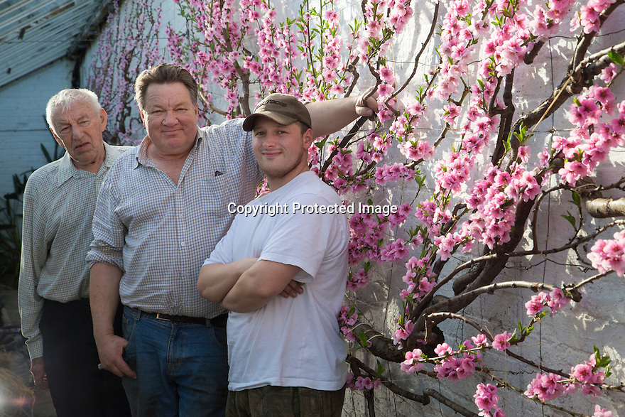 0703/17<br />